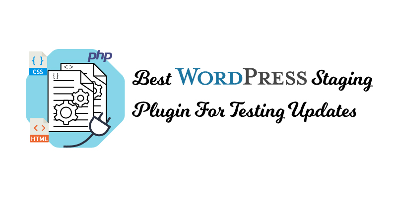 Best WordPress Staging plugin